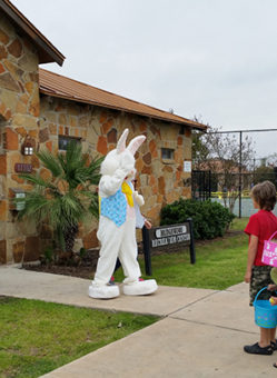 easter-bunny-arrival